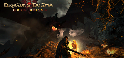 Dragon's Dogma Dark Arisen Errors