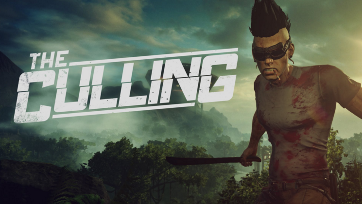 How to Fix The Culling Errors, Crashes, FPS Issues, Server Issues